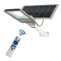 Sunovo 100W Solar Garden Pathway Street Light Adjustable Solar Panel